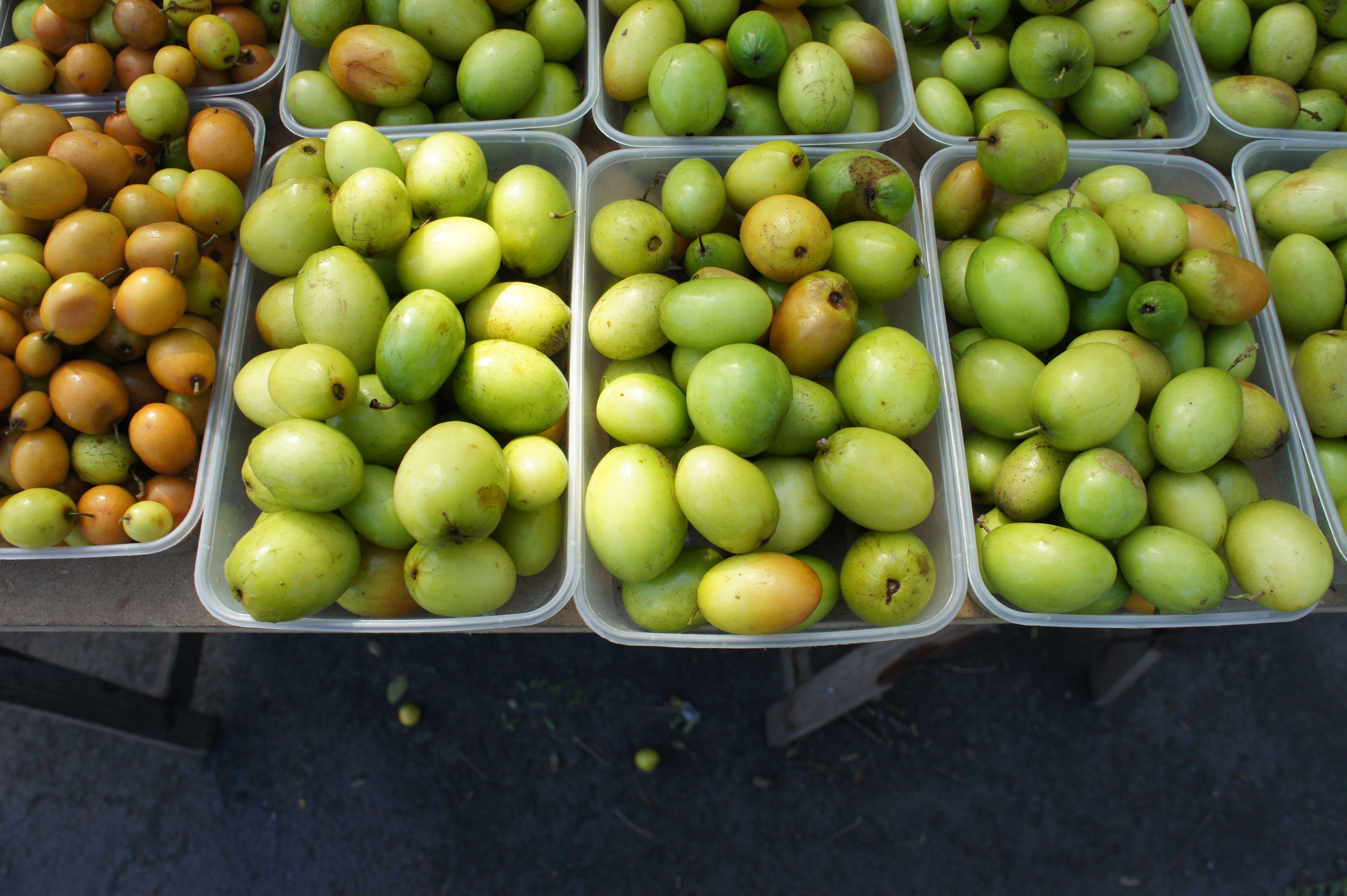 Ces Petits Fruits Qui Ressemblent A Des Olives S Appellent Des