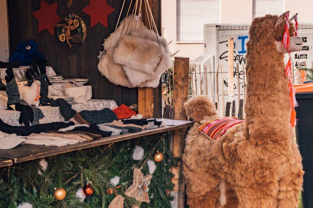 Karlsruhe Christmas Market 2020 Guide Cancelled Christmas Market Christmas Markets Europe German Christmas Markets