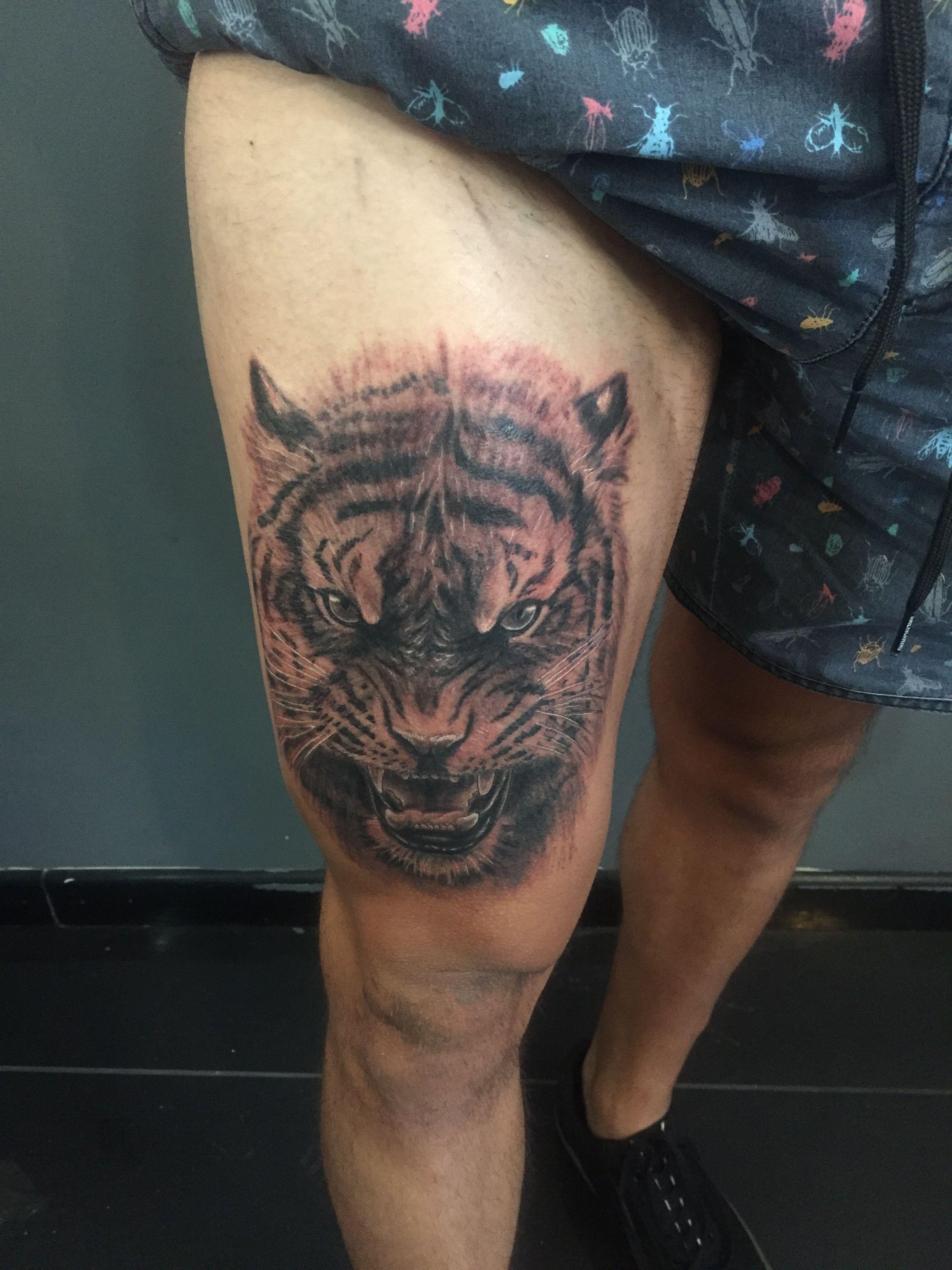 Tatto Tiger Tattoos Tatto Animal Tattoo