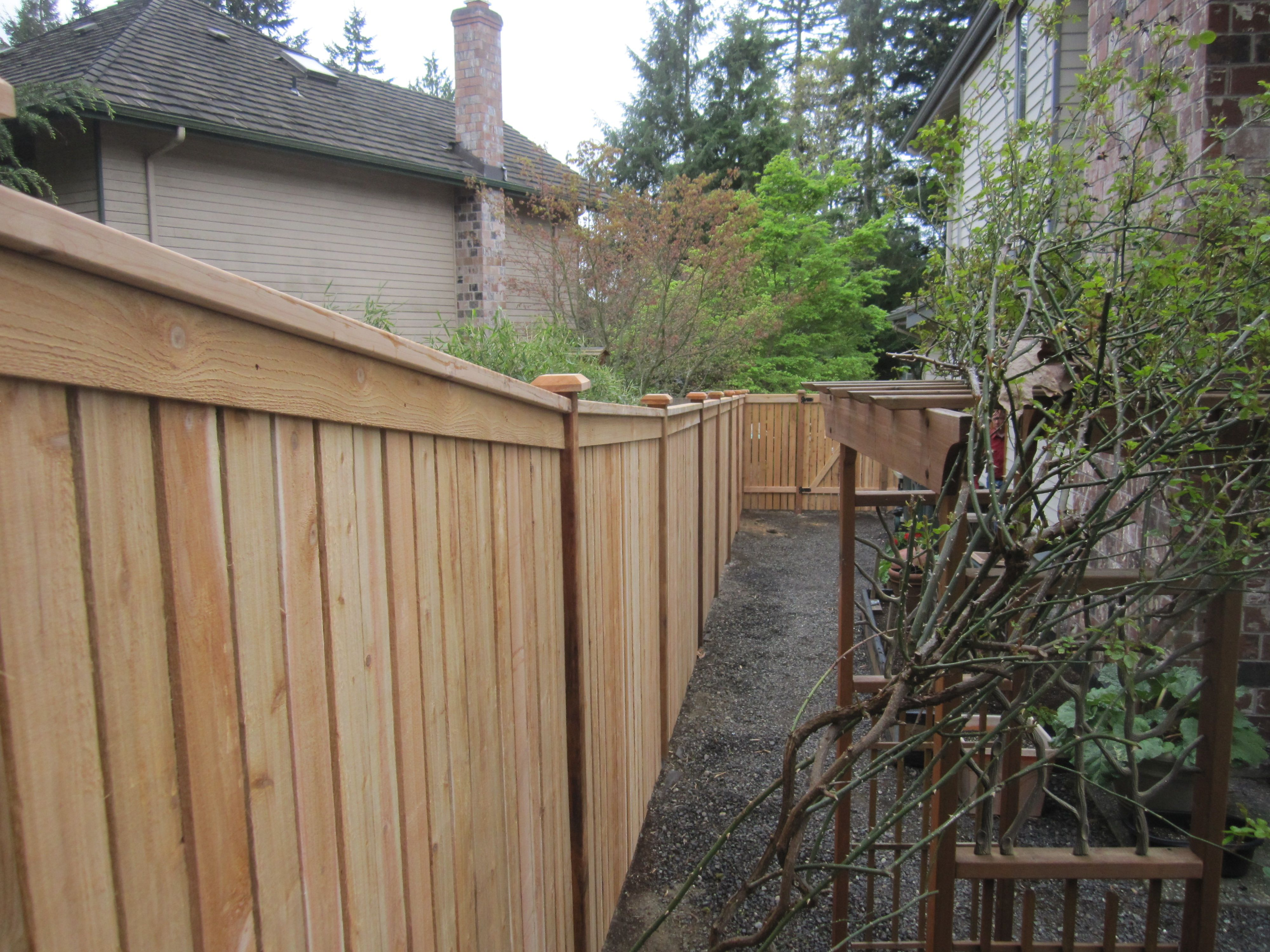 Modified Panel Cedar Fence On A Down A Slope Cedar Fence Fence Styles Wooden Fence