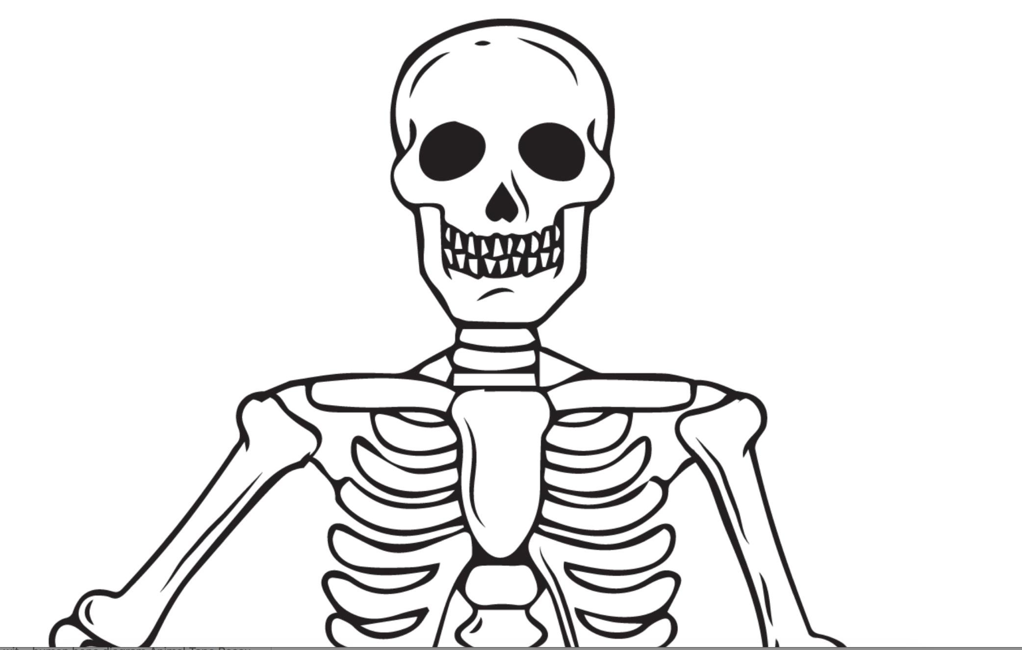 Printable Skeleton Coloring Page For Kids Halloween Coloring Pages Halloween Coloring Coloring Pages
