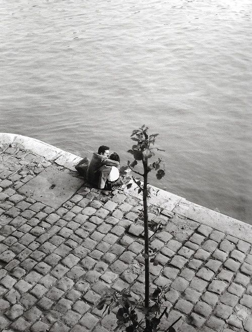 Willy Ronis, Quai du Louvre, 1953