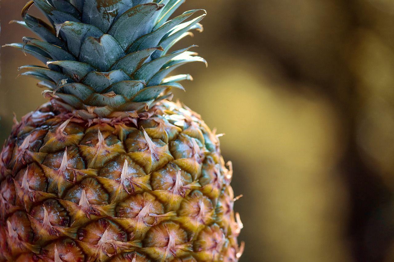 Imagen Gratis En Pixabay Pina Frutas Tropicales Frutas Em 2020