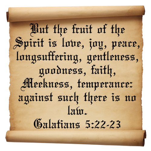 the fruit of the spirit longsuffering The fruit of the spirit-longsuffering 7/15/18 when you are filled with the spirit  and walk in the spirit you will produce the fruit of the spirit – love, joy, peace,.