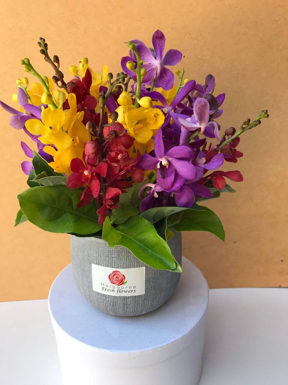 Get cheap exotic orchids flower arrangements online from get cheap exotic orchids flower arrangements online from melbourne fresh flowers they helps you spend less money on more high quality exotic orchids izmirmasajfo