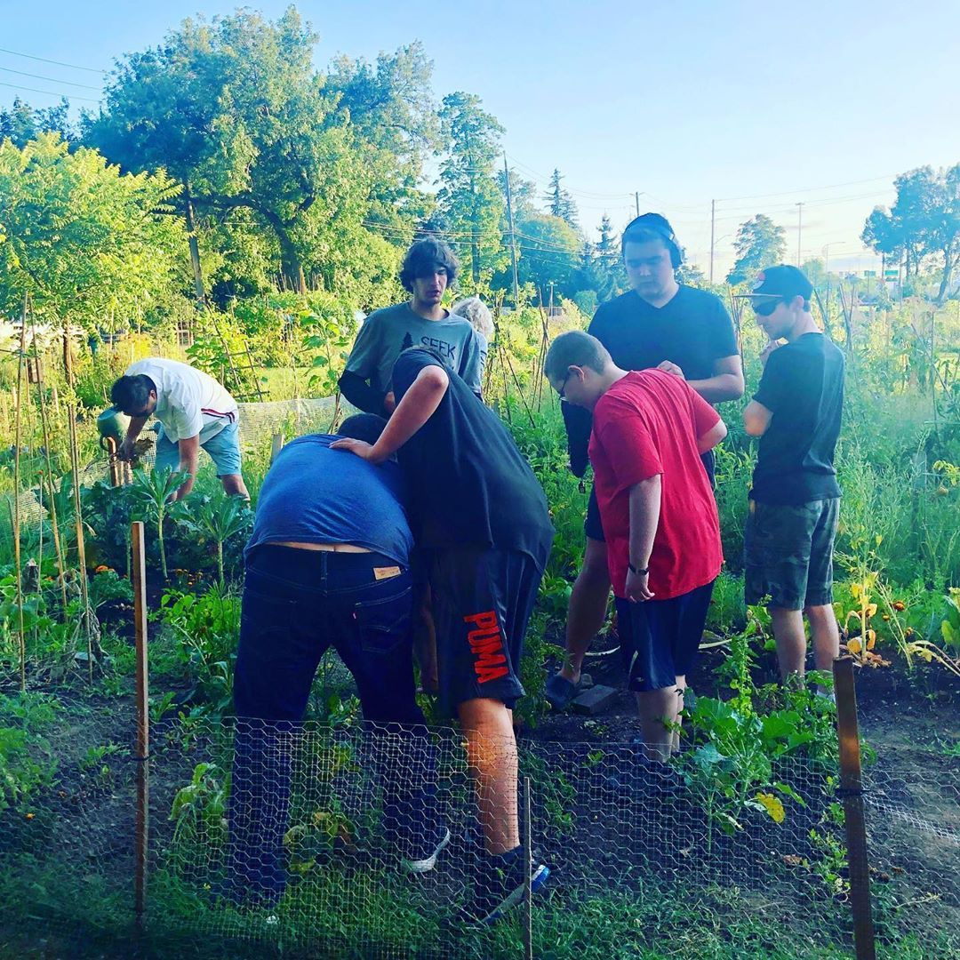 Another Project Autism community garden harvest. Tomatoes 🍅 and carrots 🥕 this time. Everyone is working hard- well done green thumbs.
