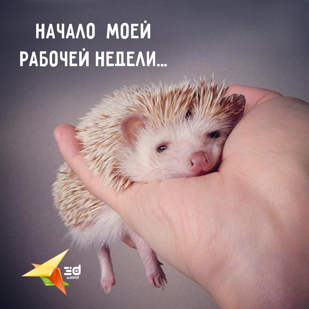 http://3dworld.com.ua/ #monday #job #3dworld #web #design #goodmood