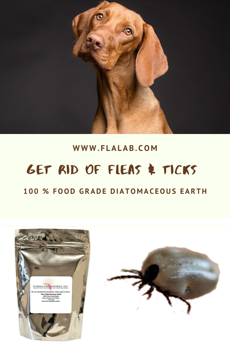 86f907c956e6bdfadf2bc0228df2e8dd - How To Get Rid Of Ticks In Your Bed