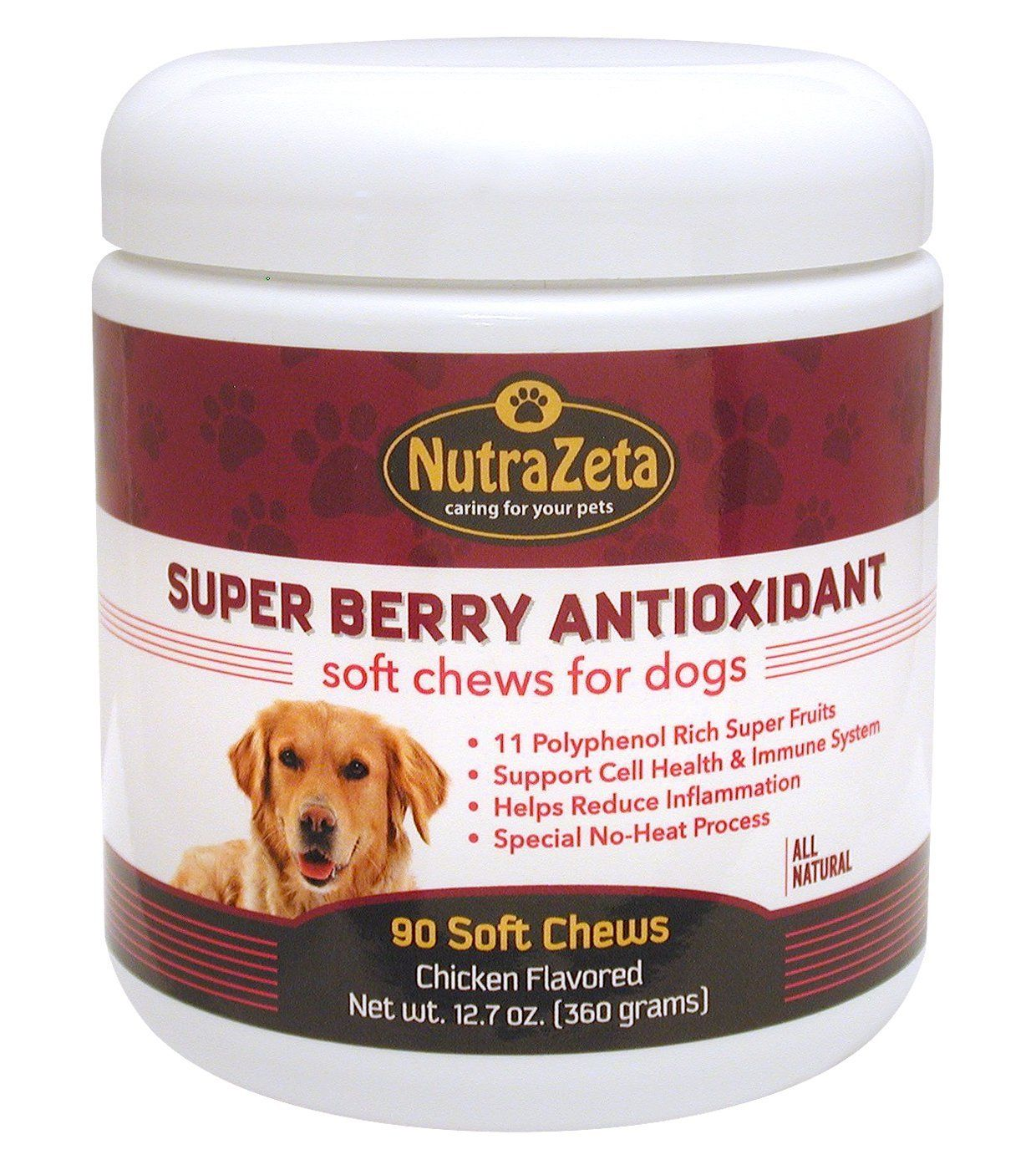 Super Rich Antioxidants for Dogs Long Life Health