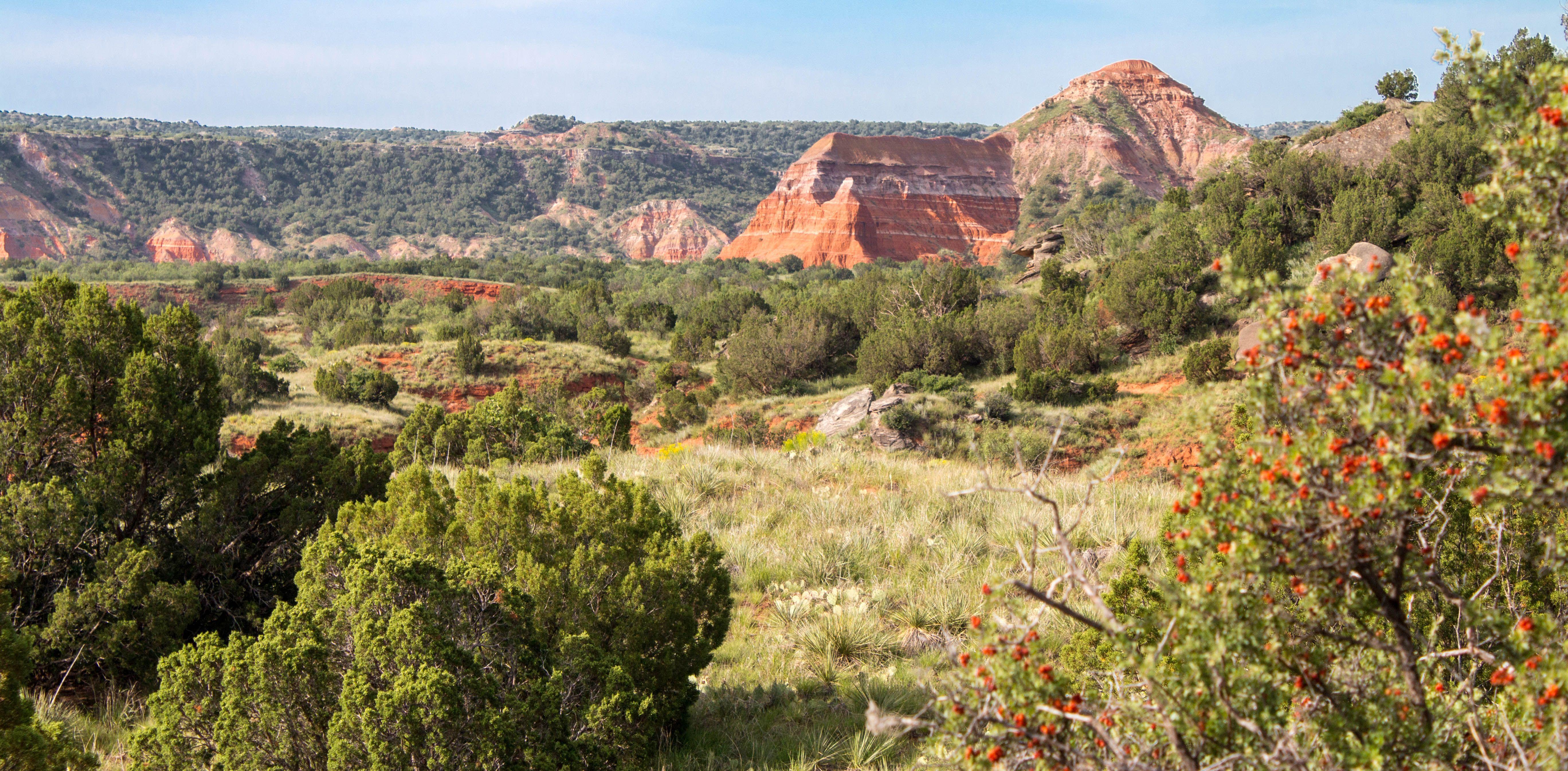Image result for palo duro canyon | Palo duro canyon, Palo ...