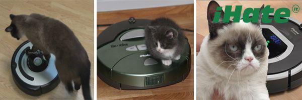 El único gato que odia la Roomba.