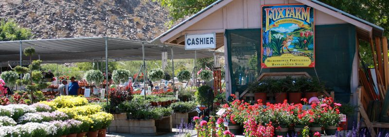 Welcome To Moller S Garden Center We Are Flower Shop Nursery