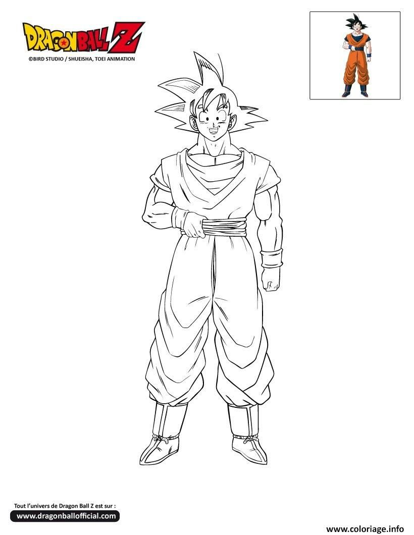 Coloriage Dbz Goku Dragon Ball Z Officiel A Imprimer Coloriage