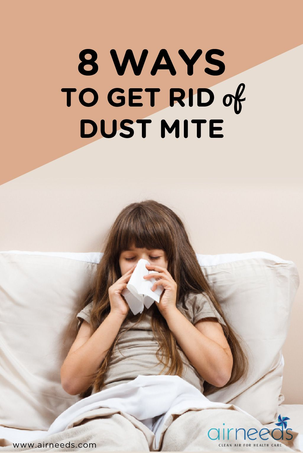 8 Ways to Get Rid of Dust Mites Easily and Quickly Dust
