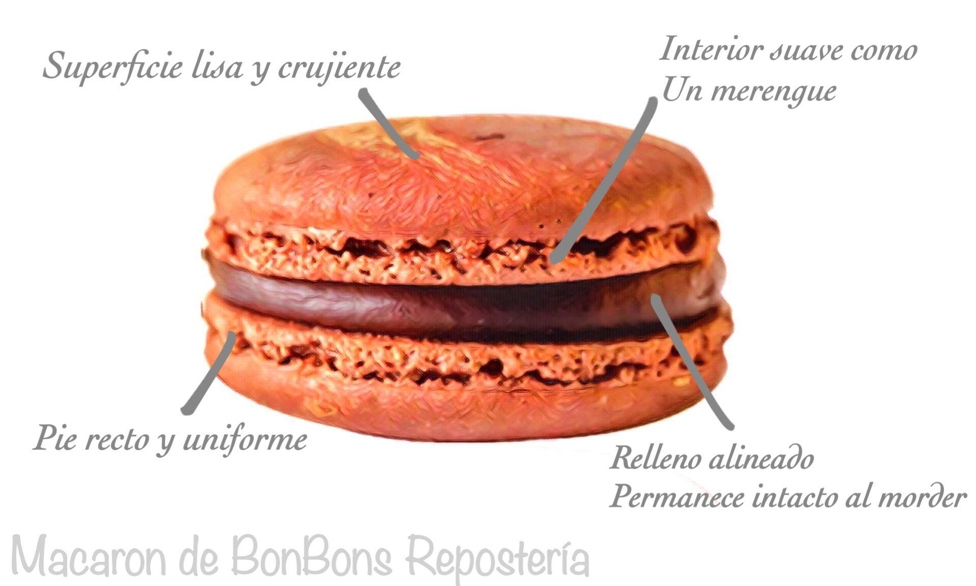 Anatomy of Macaron - Descubre e identifica nuestros espectaculares Macarons!