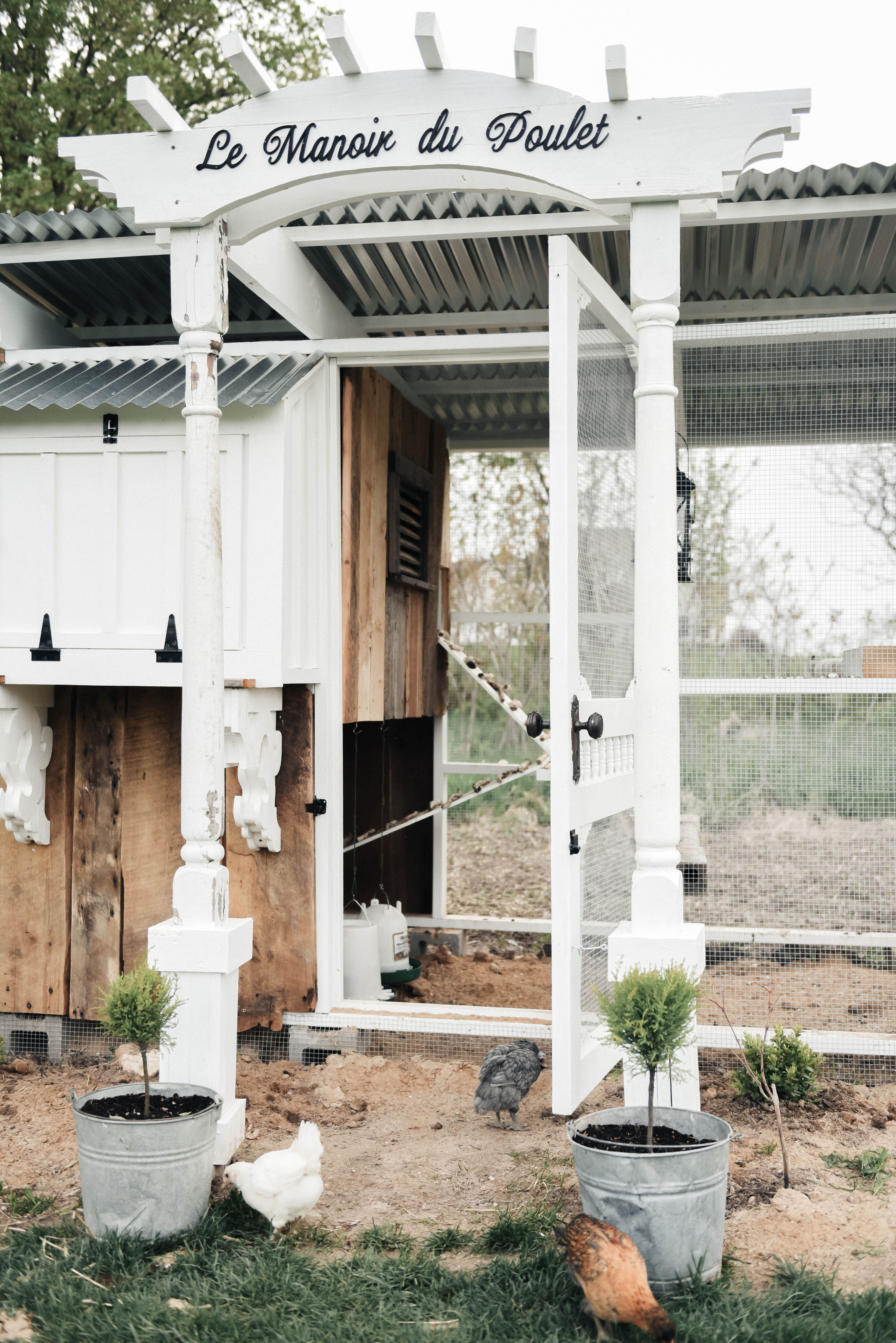 DIY Farmhouse Style Chicken Coop   Coops, Chicken coop designs and ...