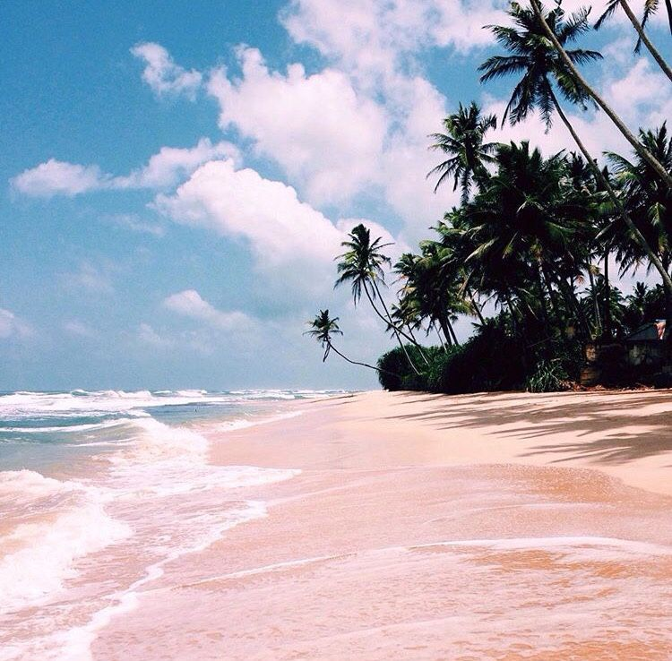 About Sea Summer Vibes Beach Summer Vibes Adventure Summer Vibes