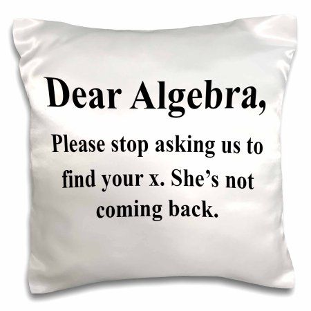 3dRose Dear Algebra please stop asking us to find your x, Pillow Case, 16 by 16-inch - Walmart.com