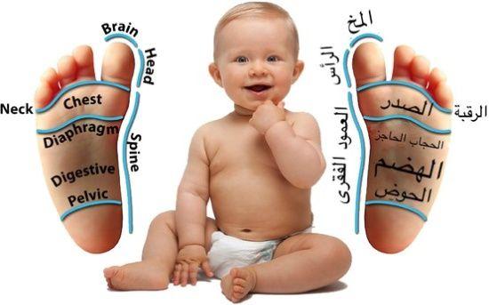 بالصور خريطة تدليك قدم الطفل سوبرماما Essential Oils For Babies Living Essentials Oils Baby Reflexology
