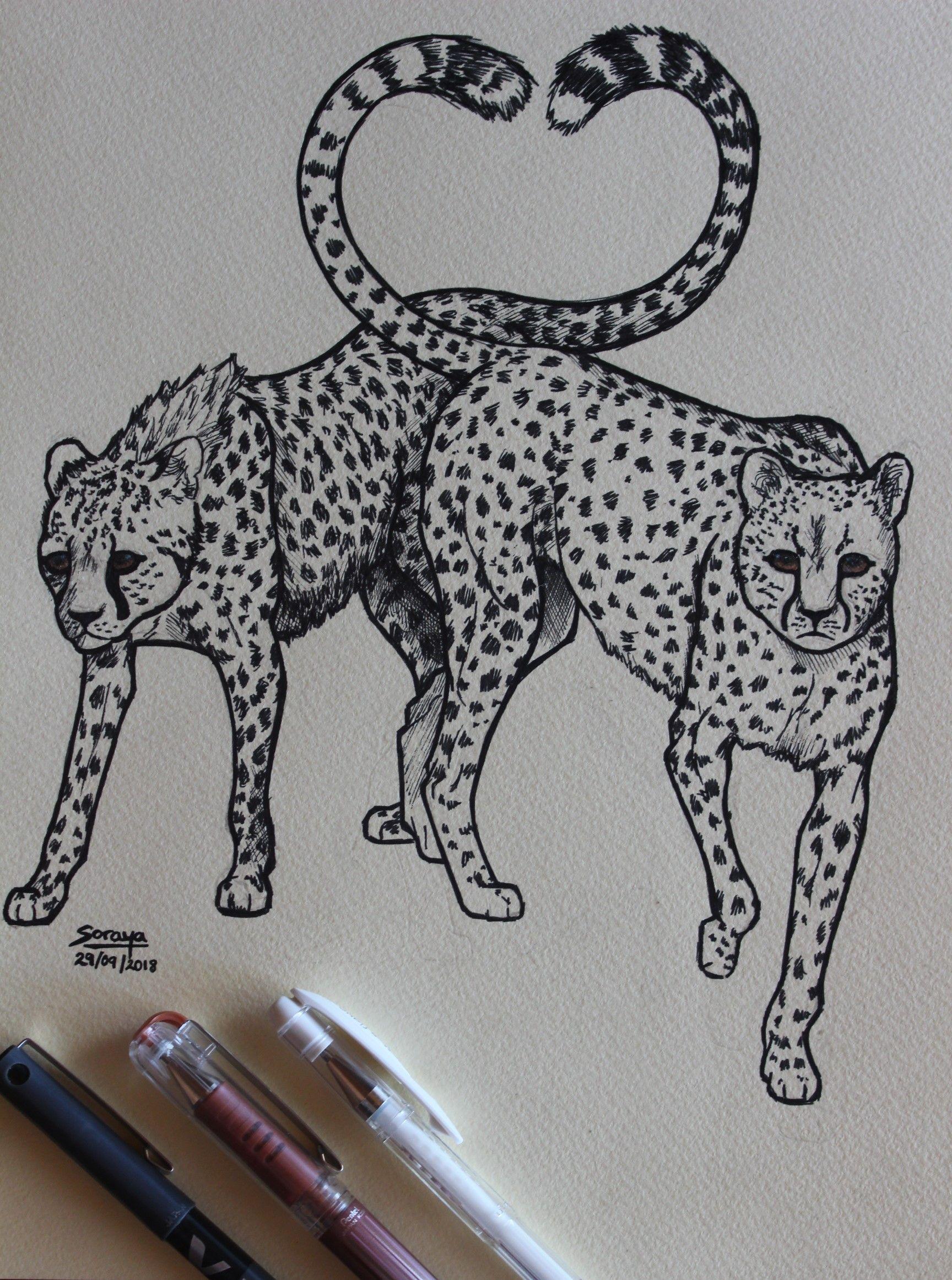 Drawing using ink pens  * * * #cheetah #animals #love #amor #animals #animalart #artdrawings #art #arte #ink #pens #caneta #penart #drawings