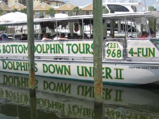 Glass Bottom Dolphin Tours Gulf Shores Alabama