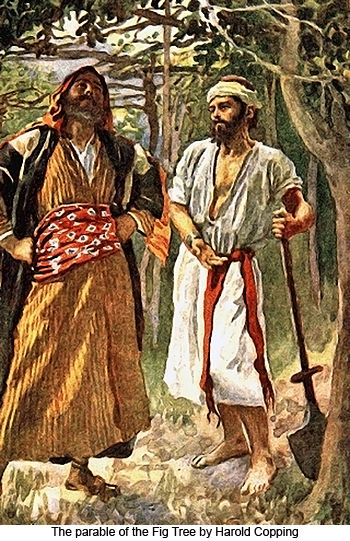 Parables Of Jesus Fig Tree Be Thankful That Jesus Loves You And Pleads For More Time With Your Heart And Growth Parables Of Jesus Bible Pictures Parables