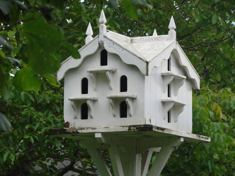 Fancy Bird Houses Galleries Holidays And Daytrips Sain