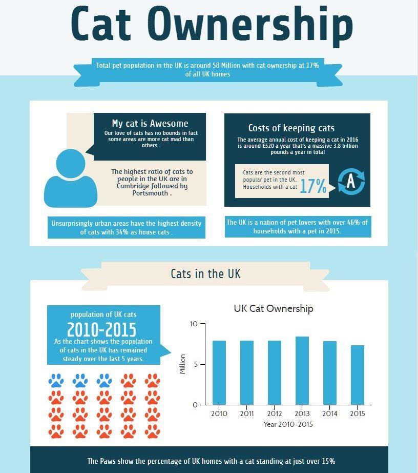 Most Popular Pedigree Cat Breeds In The Uk Cat Breeds Pedigree Cats Cat Ownership