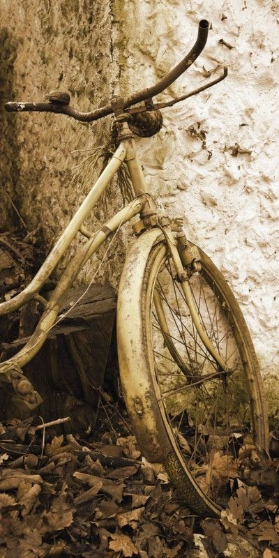 Poster Leinwand Bild Artland 324-00160-4 Anowi Fahrrad Jahrgang 1950