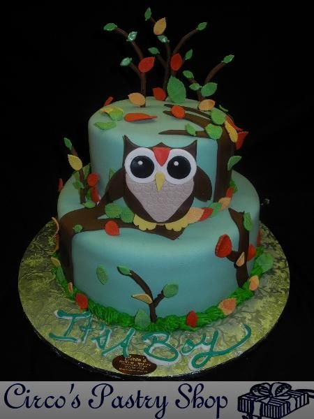 baby shower cake owl Buscar con Google modelos de torta