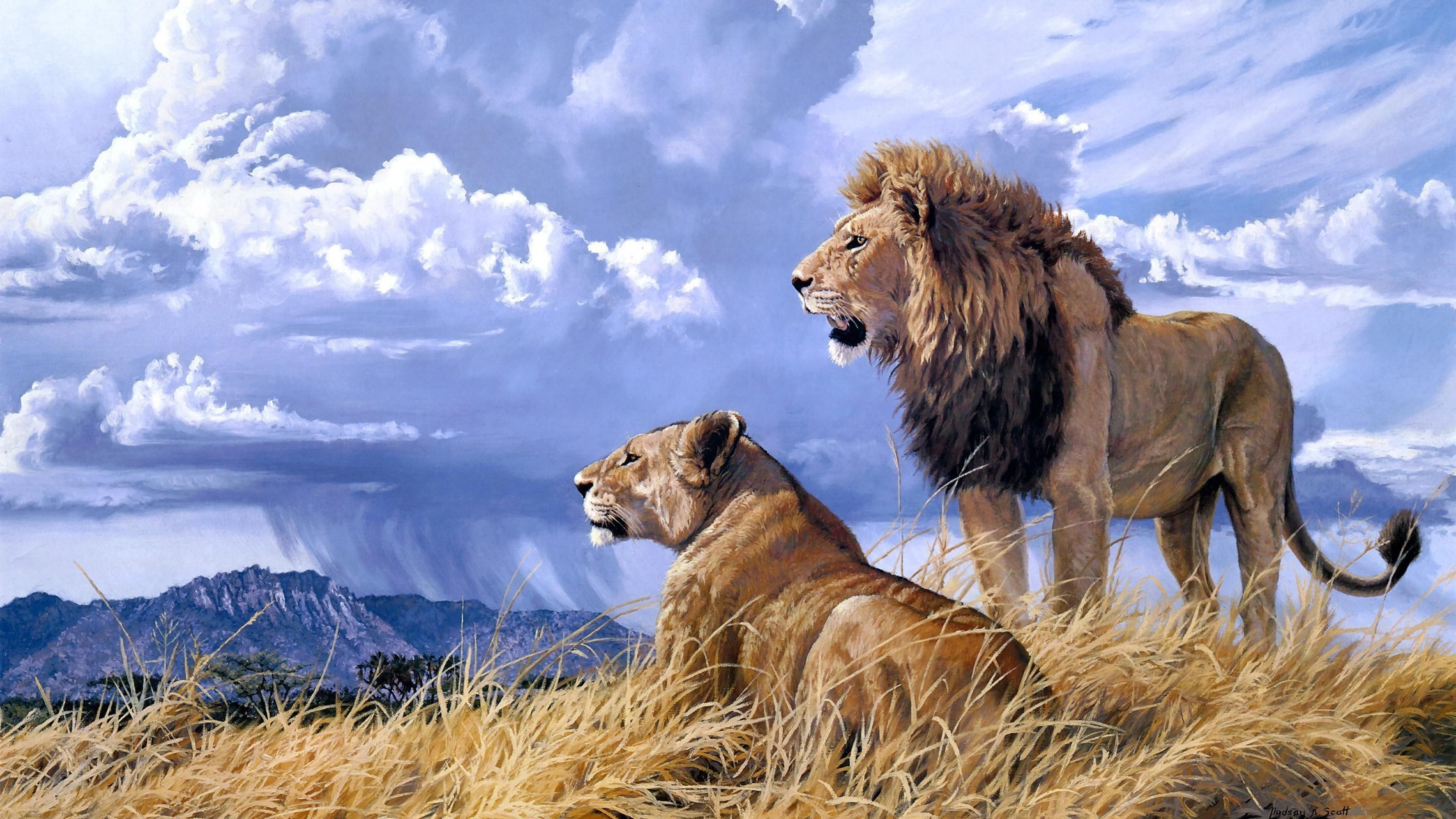 Pride Art Lion Animals Ultra 3840x2160 Hd Wallpaper