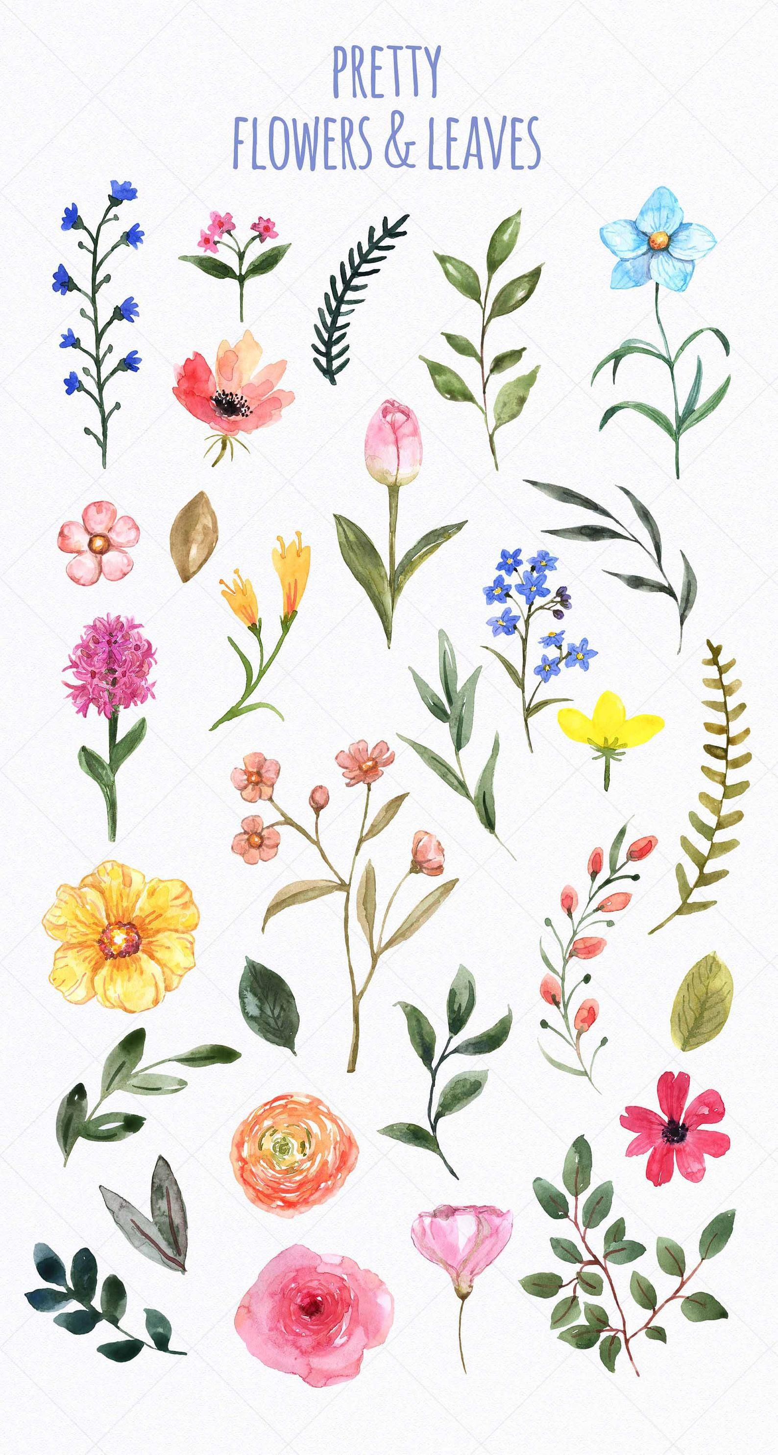 Watercolor Wildflowers Clip art Spring Cute Floral Clipart Botanical Flowers Summer Wild Flowers Leaves PNG Printable Illustration Garden