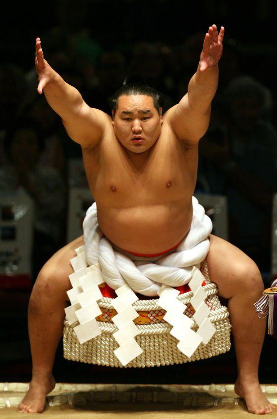 Sumo Belt | Club Penguin Wiki | Fandom powered by Wikia