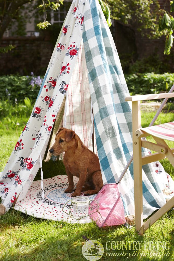 Perfect for hot summer Texas Hill Country Days! Dog in a