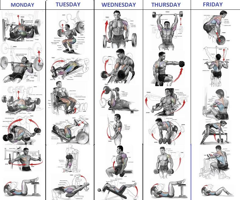 Discover Ideas About Best Workout Routine