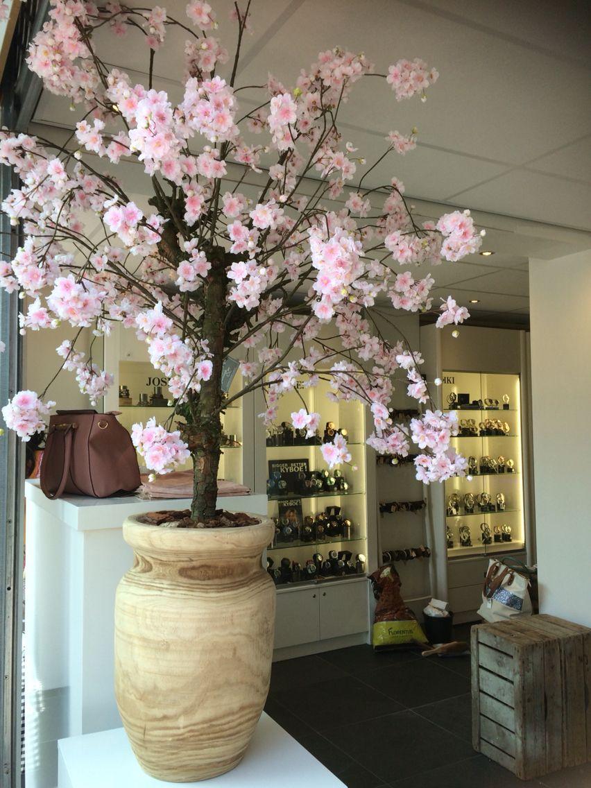 Zijden bloesemboom bij Sisters by Bianca in Naaldwijk. Eyecatcher ...