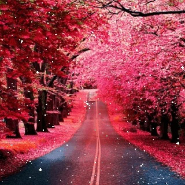 Don T U Wish This Looked Like This In Real Life Amazing Nature Photography Nature Beautiful Nature