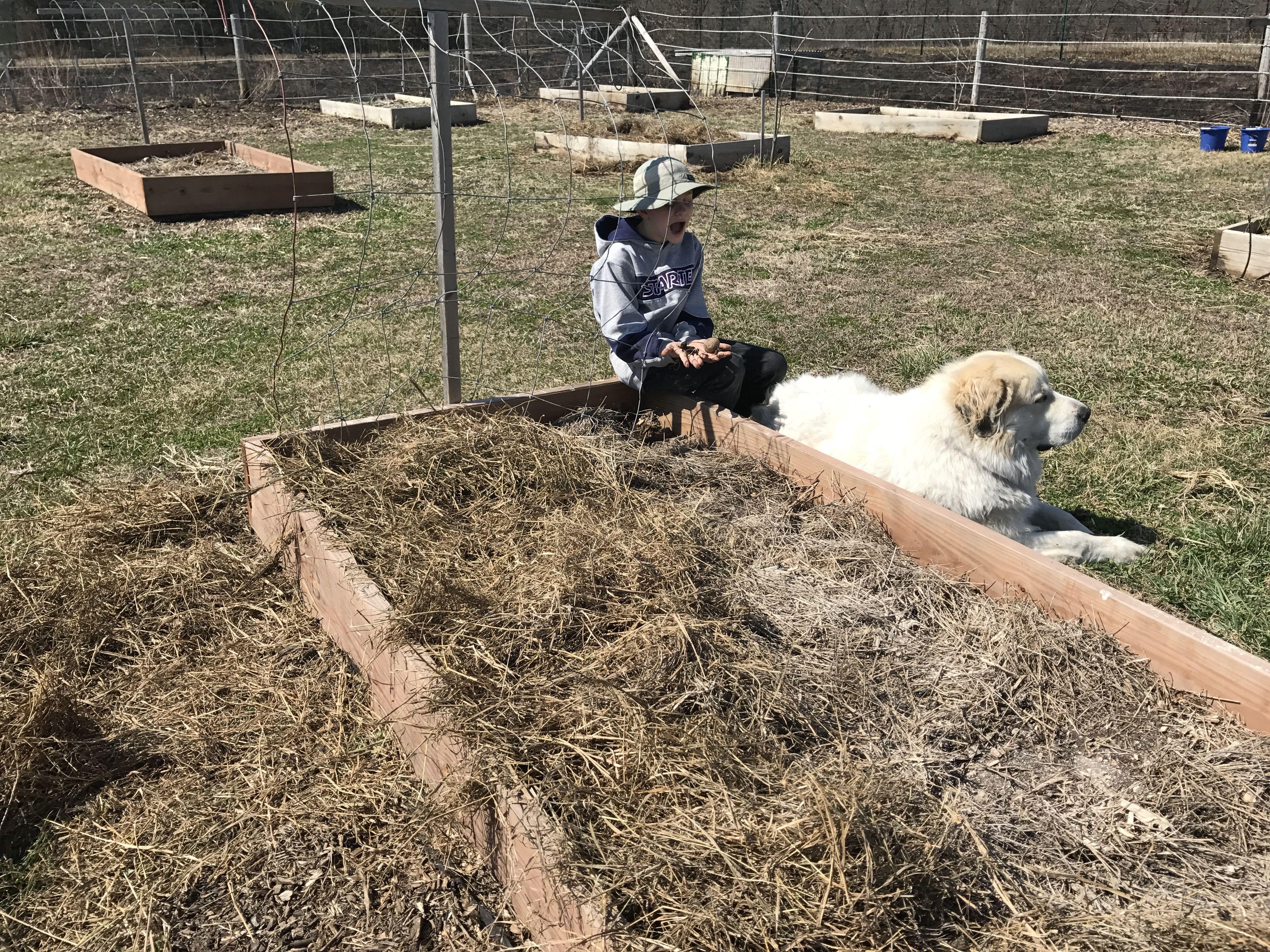 Pin by Cathy Grisham on Farm life Farm life, Hobby farms