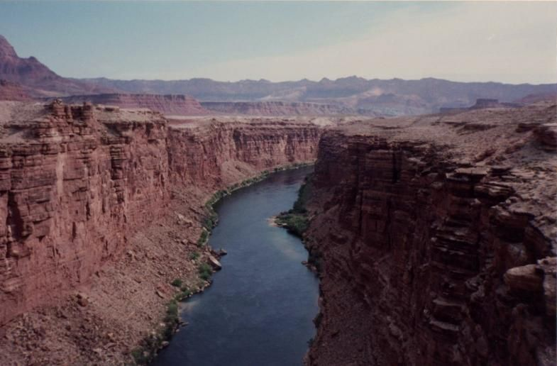 Grand+Canyon+National+Park+Wildlife | Grand Canyon