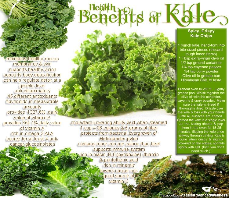 dried kale health benefits