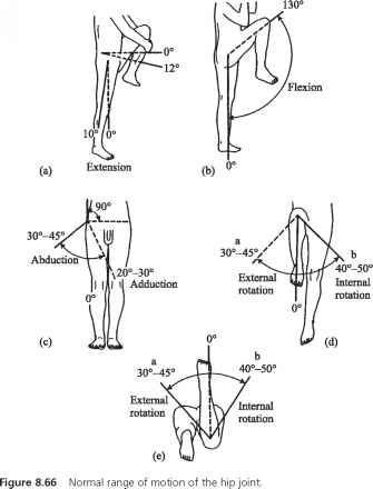 Shoulder Range Of Motion Chart Joint B Rom Head Cirference Guws Medical