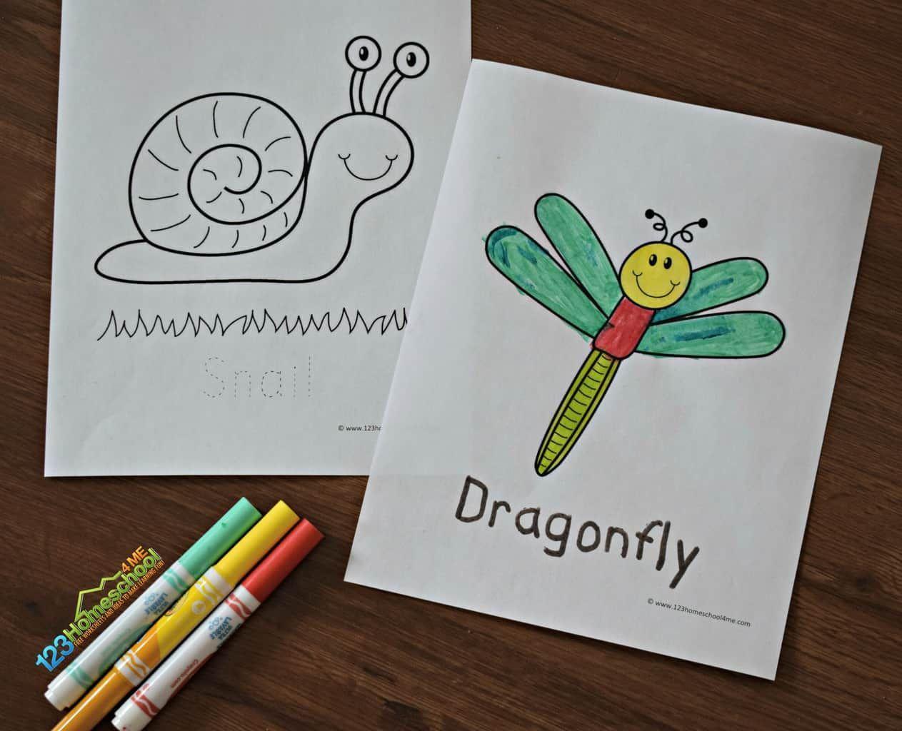 FREE Bug Coloring Pages | Bug coloring pages, Coloring ...