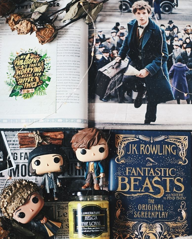 Have you seen the new fantastic beast the crimes of