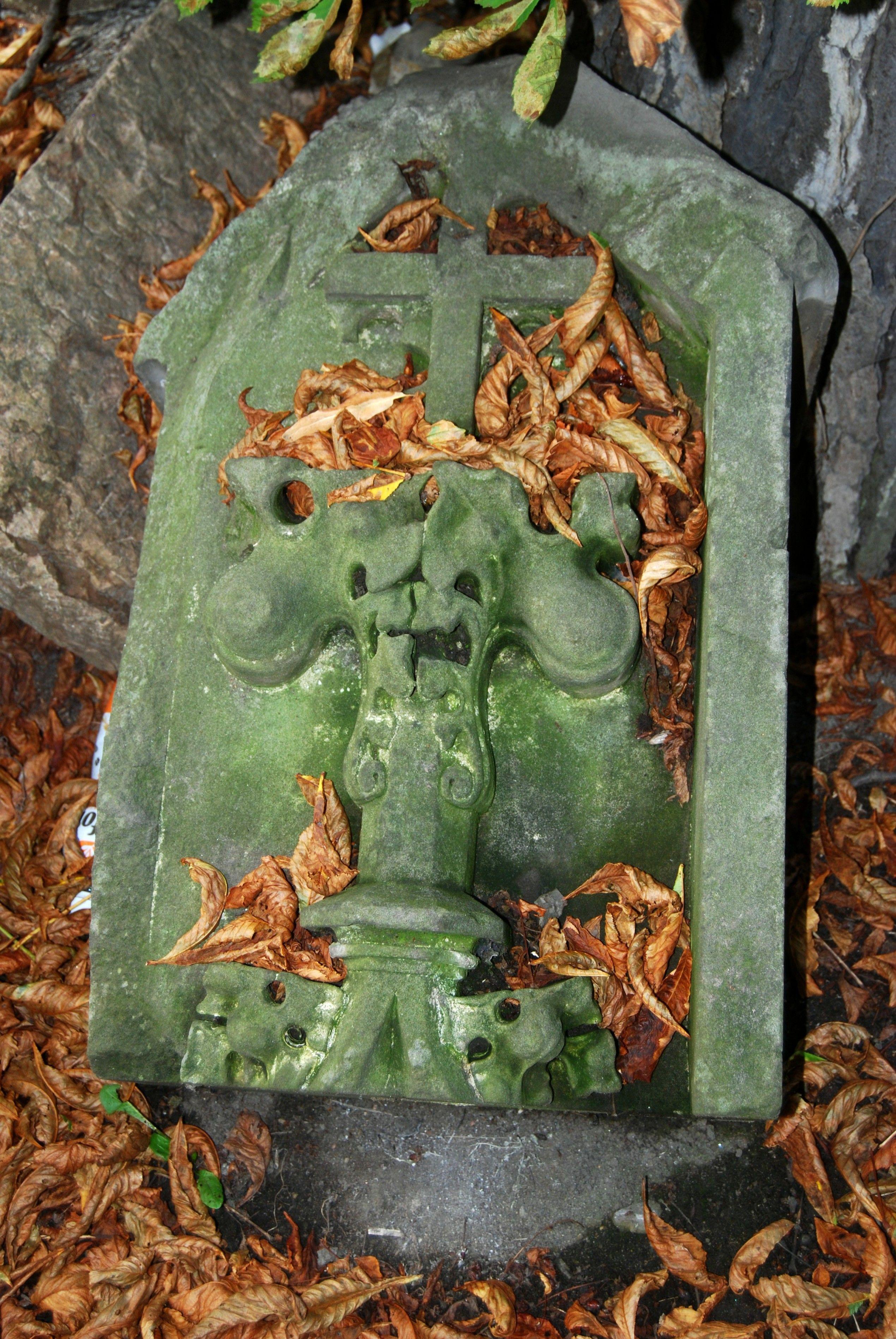 OlsanskéFriedhof Prag (26) Prag, Grabstein, Friedhof