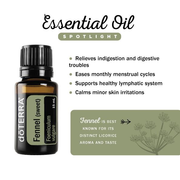 Used Or Centuries For Its Many Health Benefits Fennel