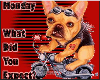 Haaaaa LOL It's Monday, what did you expect?