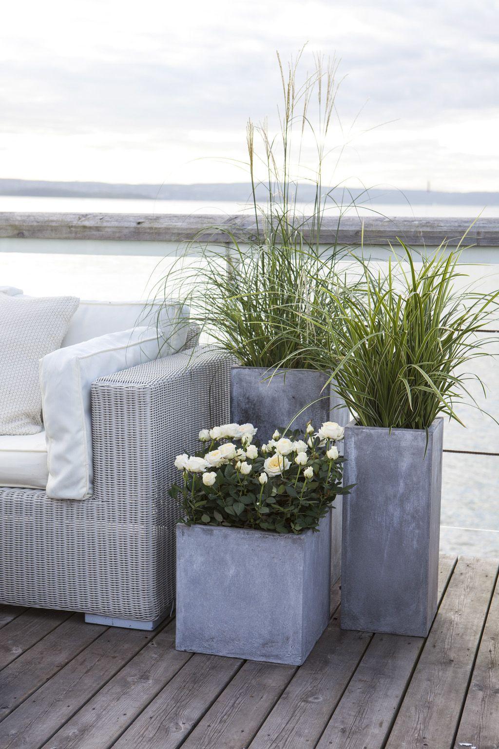 Photo of Se årets utepotter til terrassen | Inspirasjon fra Mester Grønn