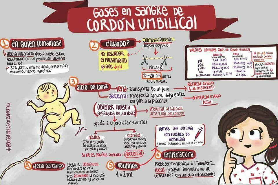 Pin de Adriana Carvalho en Enfermagem | Pinterest | Pediatría ...