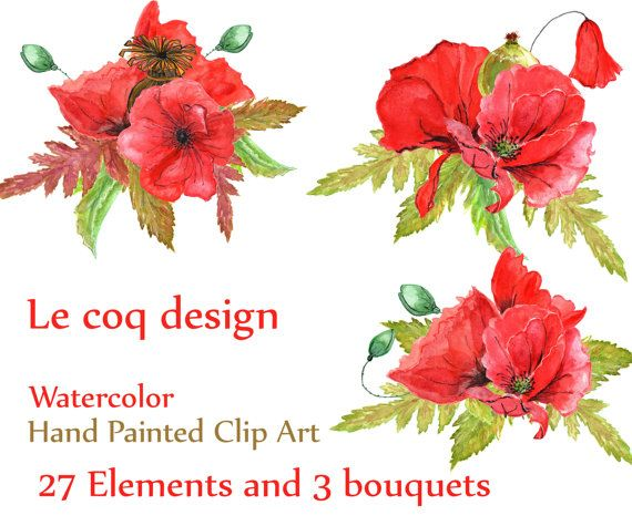 30 watercolor poppies clipart poppies clip art floral clip art on sale40 watercolor poppies clipart poppies clip mightylinksfo