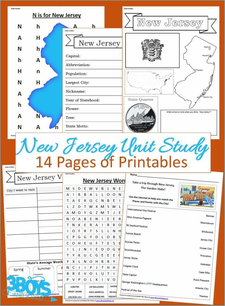 New Jersey State Unit Study With Images Study Unit Geography